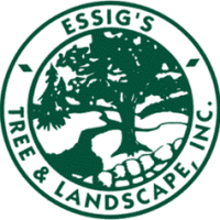 Essig Tree & Landscape, Inc.